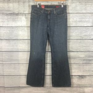 Express X2 Curvy regular rise flare jeans size 6